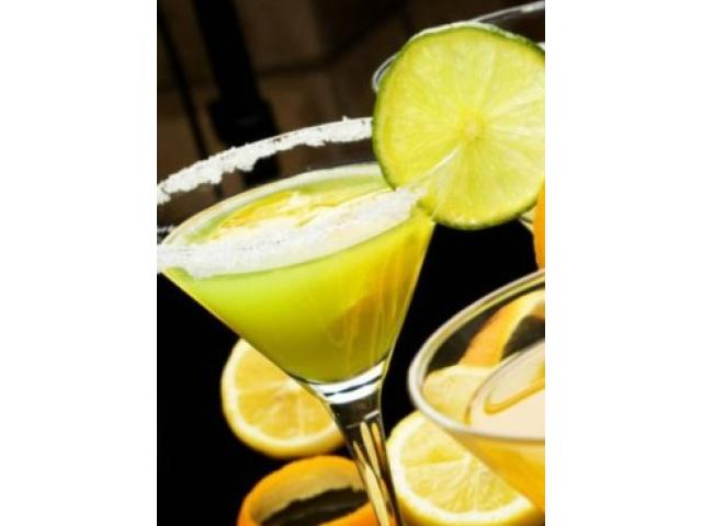 Free Book - Bartending recipes, tips and tricks