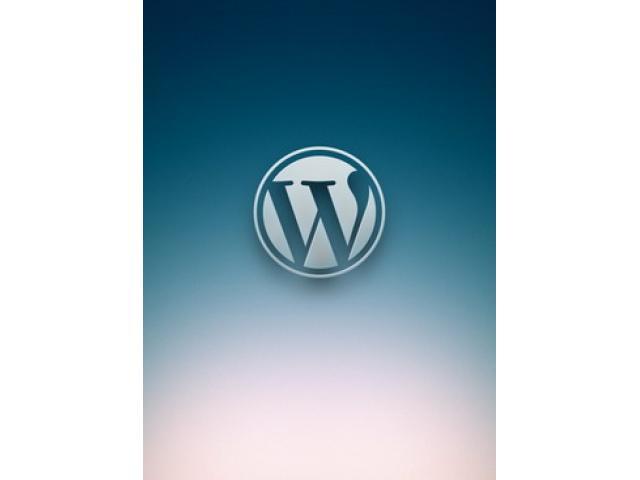 Free Book - WordPress customization DIY guide