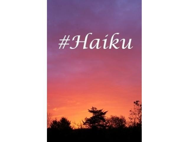 Free Book - #Haiku