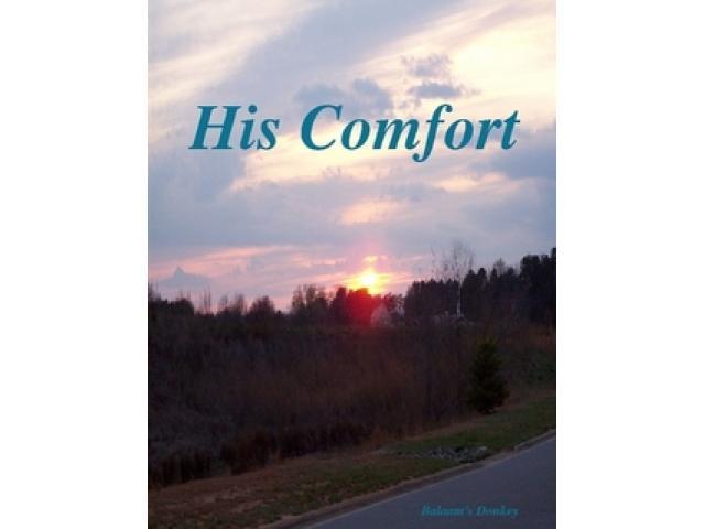 Free Book - His Comfort