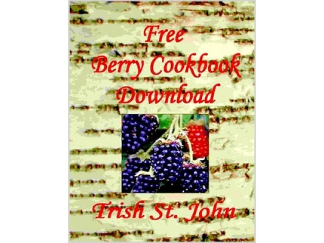 Free Book - Free Wild Berry Minnesota Cookbook download