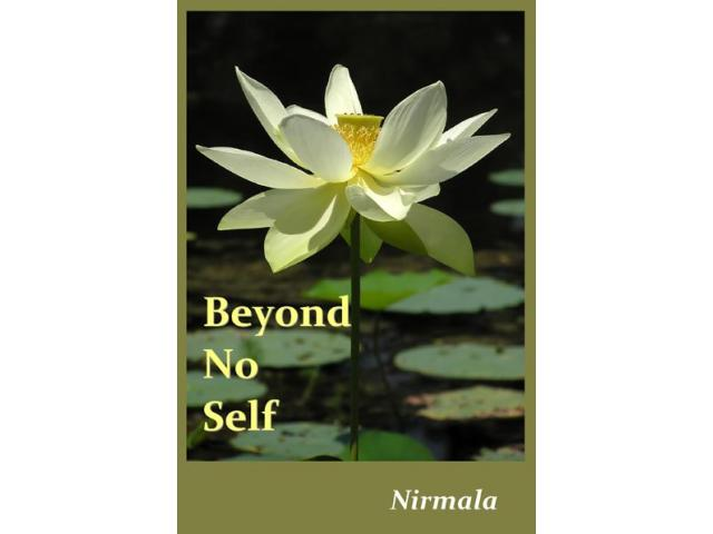 Free Book - Beyond No Self