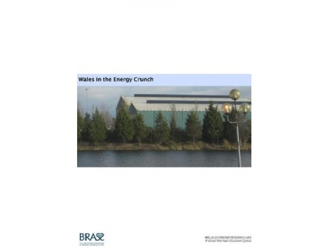 Free Book - Wales in the Energy Crunch