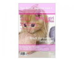Teenknitter Magazine 4